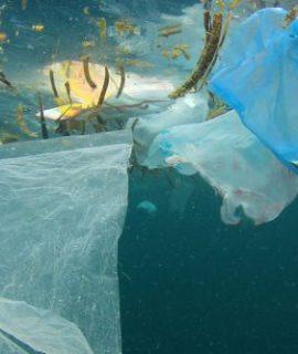 Modelagem baseada em agentes como importante solução na despoluição dos mares.